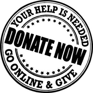 Individual Fundraising